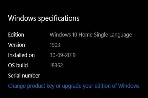 What Windows 10 version do I have