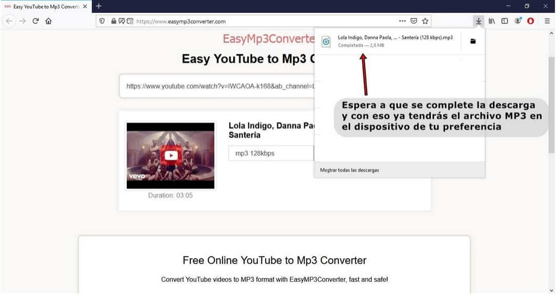 Convertidor-de-youtube-a-mp3_inst_Easy MP3 Converter_3